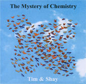 The Mystery of Chemistry - Tim Welvaars & Shay Alon